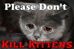 Don't Kill Kittens