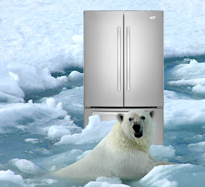 Whirlpool Fridge Ice Buildup
